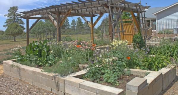 vegetable gardens2