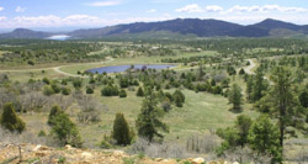 Shenandoah 44+ acre property Lot2&3 views of Lake Nighthorse
