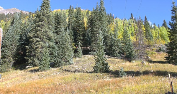 Silverton mining claim eastern edge of property