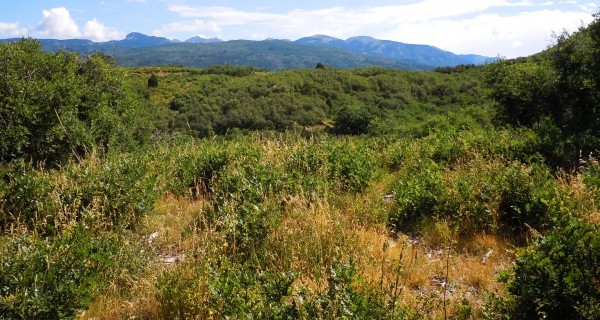 Elk Stream Ranch lot for sale