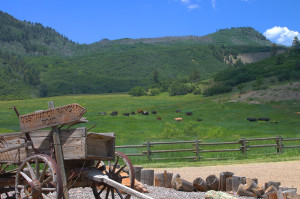 Durango CO land for sale-destination ranch