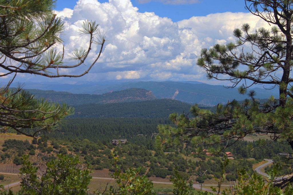 Durango CO Land for Sale TBD D&RG views