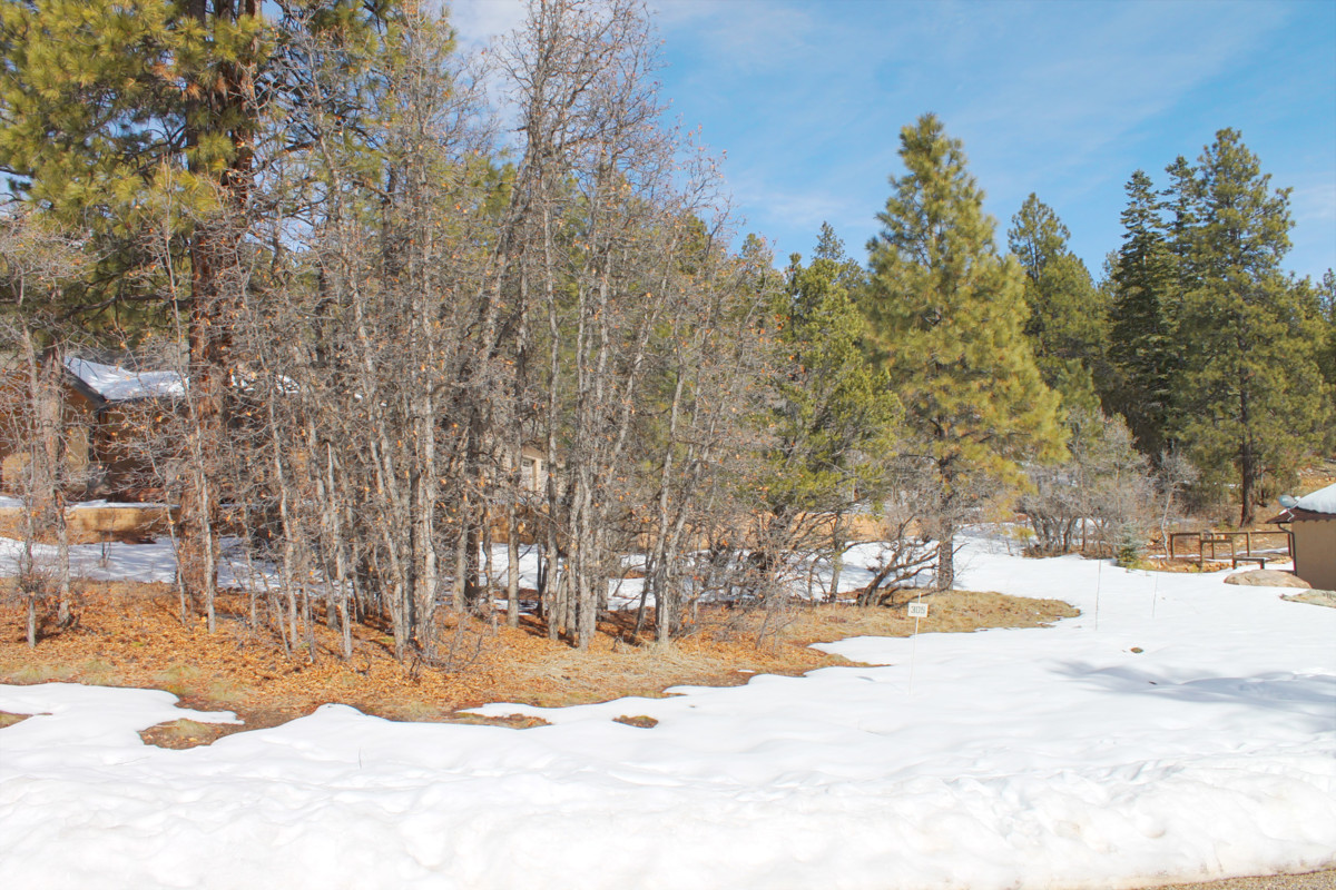 Spectacular views await your dream home among the tall pines of Edgemont Highlands!